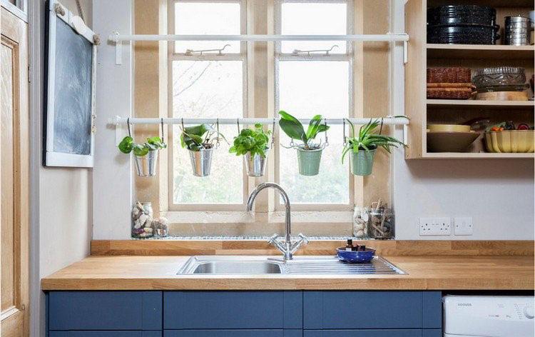 plantes-cuisine