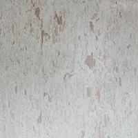 Meleze blanchi